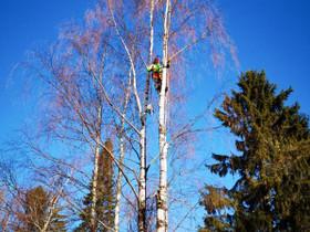 Puunkaatoa Uudellamaalla, Palvelut, Sipoo, Tori.fi