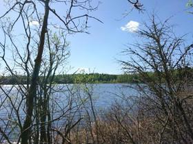 Pihtipudas Kärväsjärvi Sääskiniementie, Tontit, Pihtipudas, Tori.fi