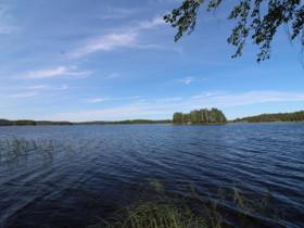 Puumala Muuramäki Katinhännäntie 96, Tontit, Puumala, Tori.fi