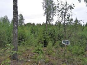 Myrskylä Pakila Huvilatie, Tontit, Askola, Tori.fi