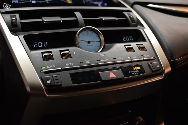 Lexus NX 24
