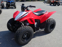 Honda TRX -19