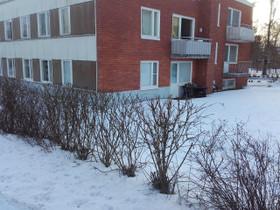 3H, 74m², Puistolankuja, Orivesi, Vuokrattavat asunnot, Asunnot, Orivesi, Tori.fi
