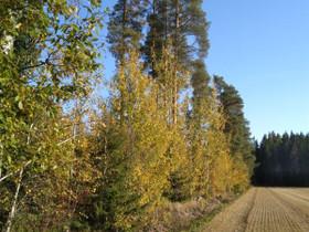 Mäntsälä Numminen Nordbo 220, Tontit, Mäntsälä, Tori.fi