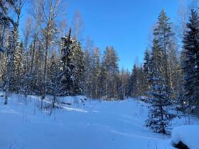 Askola Huuvari Tamminiementie, Tontit, Askola, Tori.fi