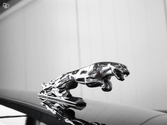 Jaguar XJ6 5