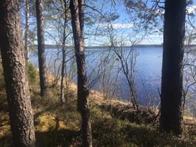 Keuruu Liesjärvi Savilahdenpolku 134, Tontit, Keuruu, Tori.fi