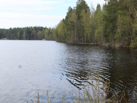 Mänttä-Vilppula Ritoniemi Pohjaslahdentie 2338, Tontit, Mänttä-Vilppula, Tori.fi