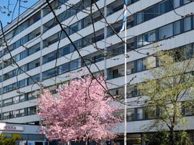 Helsinki Kallio Porvoonkatu 3 2h+k+p, Myytävät asunnot, Asunnot, Helsinki, Tori.fi