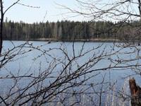 Taipalsaari Kyläniemi Someronniementie 30