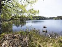 4101m², Ojajärventie 440, 3, Hämeenlinna