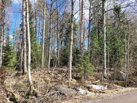 2960m², Kurpantie 5, Hämeenlinna, Tontit, Hämeenlinna, Tori.fi