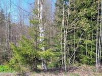 981m², Herttakatu 1, Riihimäki