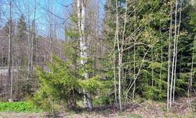 981m², Herttakatu 1, Riihimäki, Tontit, Riihimäki, Tori.fi