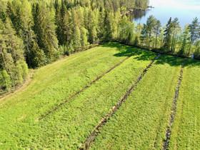 Alavus Iso Liesjärvi Lahdenahontie 168, Tontit, Ähtäri, Tori.fi