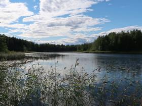 Rantasalmi Voinsalmi Litmantie, Tontit, Rantasalmi, Tori.fi