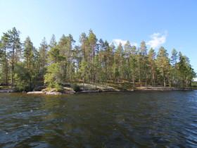 Hirvensalmi Hämeenmäki Varpasaari, Suontee, Hirven, Tontit, Hirvensalmi, Tori.fi