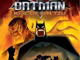 Batman Rise of Sin Tzu PS2, Pelikonsolit ja pelaaminen, Viihde-elektroniikka, Lahti, Tori.fi