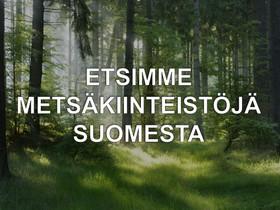 Metsää, Metsätilat ja maatilat, Jyväskylä, Tori.fi