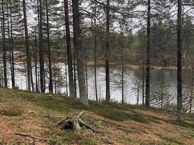 Tontteja kauniin Joutsenlammen rannalla Sallassa, Tontit, Salla, Tori.fi