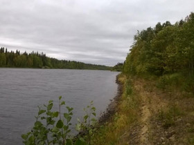 Neljä isoa tonttia Kitisen rannalta - yht. 14 ha, Tontit, Sodankylä, Tori.fi