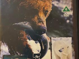 Big Bears in the Wild- 3 discs Dvd Uusi, Elokuvat, Turku, Tori.fi