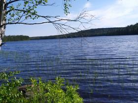 Saarijärvellä lakojärvi, Metsätilat ja maatilat, Saarijärvi, Tori.fi