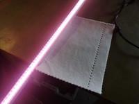 Kasvatusvalaisin Valoya L35 AP67 Clear LED Tube