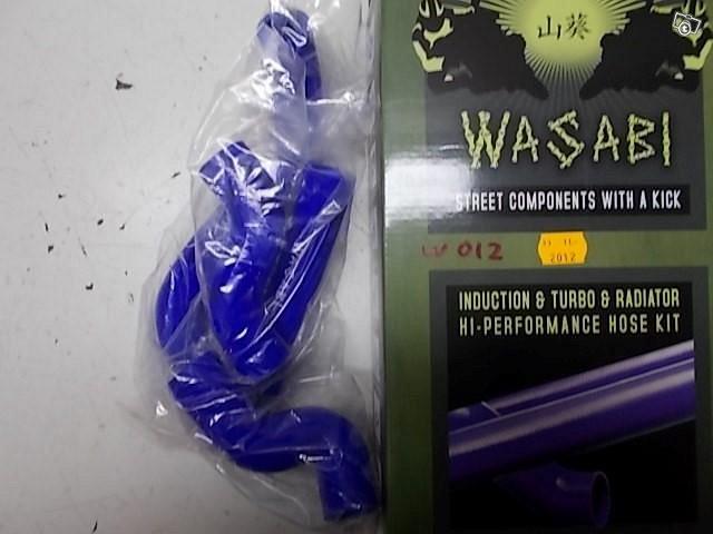 Wasabi letkusrj. sin Z750 07-
