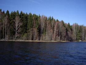 Vapaa-ajan tontti RA tontti Iso-Roineen saaressa, Tontit, Hämeenlinna, Tori.fi