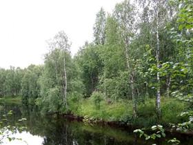 Metsämaata, Metsätilat ja maatilat, Rovaniemi, Tori.fi