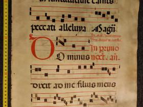 Velliiniantifoni noin vuodelta 1350, aitoustodist, Muu keräily, Keräily, Imatra, Tori.fi