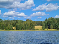 Äänekoskella sijaitseva maa/metsätila Rajala