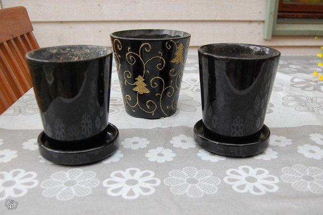 Kolme mustaa kukkaruukkua