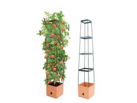 Tomaattitorni Bio Green Maxitom, Kasvit ja siemenet, Piha ja puutarha, Helsinki, Tori.fi