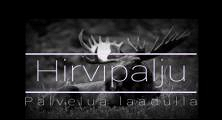 Hirvipalju