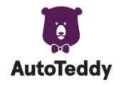 AutoTeddy